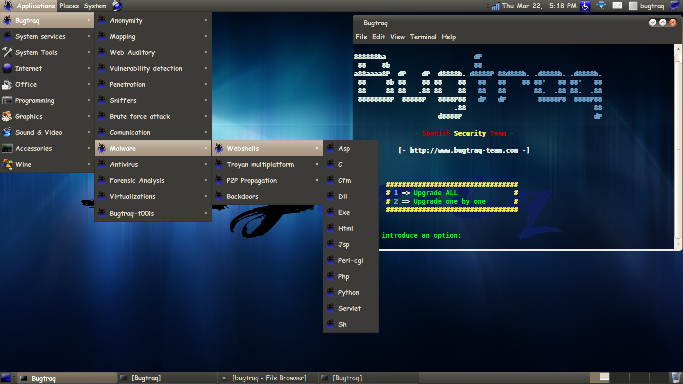 Bugtraq System Linux