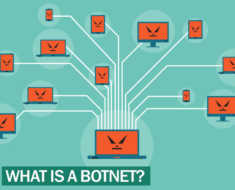 What is botnet ?