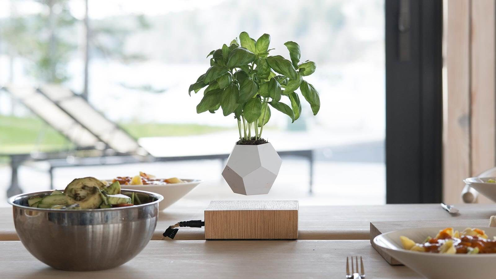 Top 5 mind blowing new levitating floating gadgets for Levitating plant